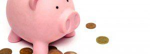 Share Savings Account
